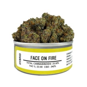Buy Face on Fire Space Monkey Meds